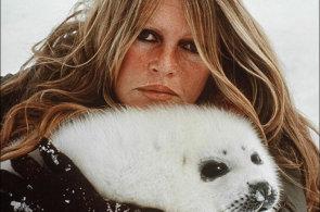 Já jsem Brigitte Bardotová a žádám... Ochránkyně zvířat slaví 80. narozeniny