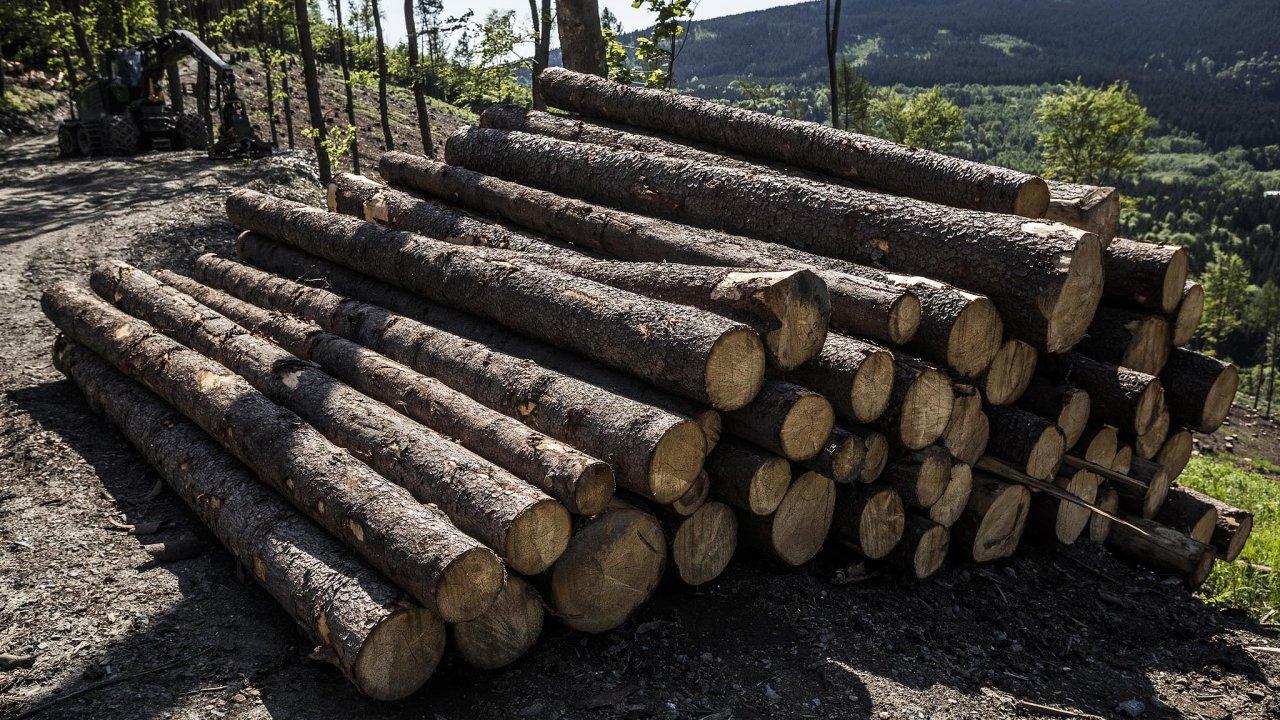 Katastrofa naMoravě: Lesy naseveru Moravy postihla největší kůrovcová kalamita oddob Rakouska-Uherska. LesyČR ji podle inspekce řešily nedostatečně.