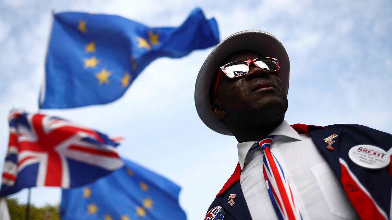 Pro odchod. Skupina zastánců co nejrychlejšího brexitu se sešla před britským parlamentem.