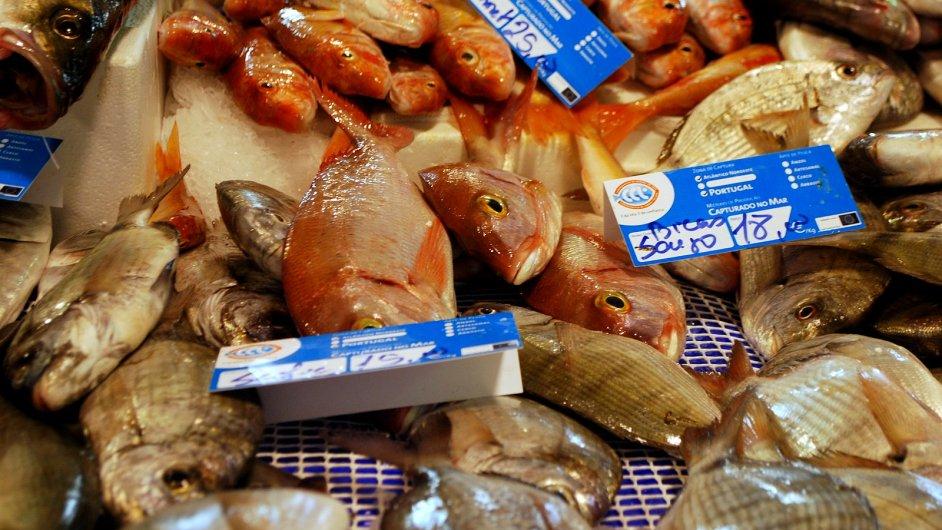 Rybí trh v Aljezuru