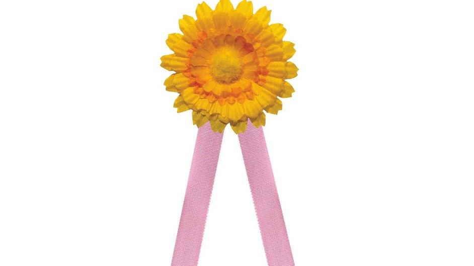 Růžová stuha symbolizuje letošní téma sbírky - rakovinu prsu.