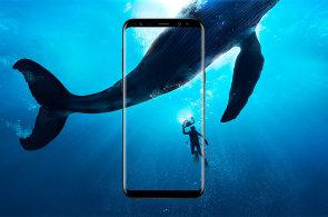Galaxy S9 s novým procesorem se představí o čtvrt roku dříve, už v lednu na veletrhu CES