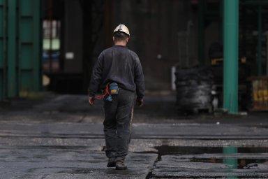 Vcelé EU by jen doroku 2030 mohlo zmizet 160 tisíc míst spojených stěžbou uhlí auhelnými elektrárnami. VČesku to může být 18 tisíc.