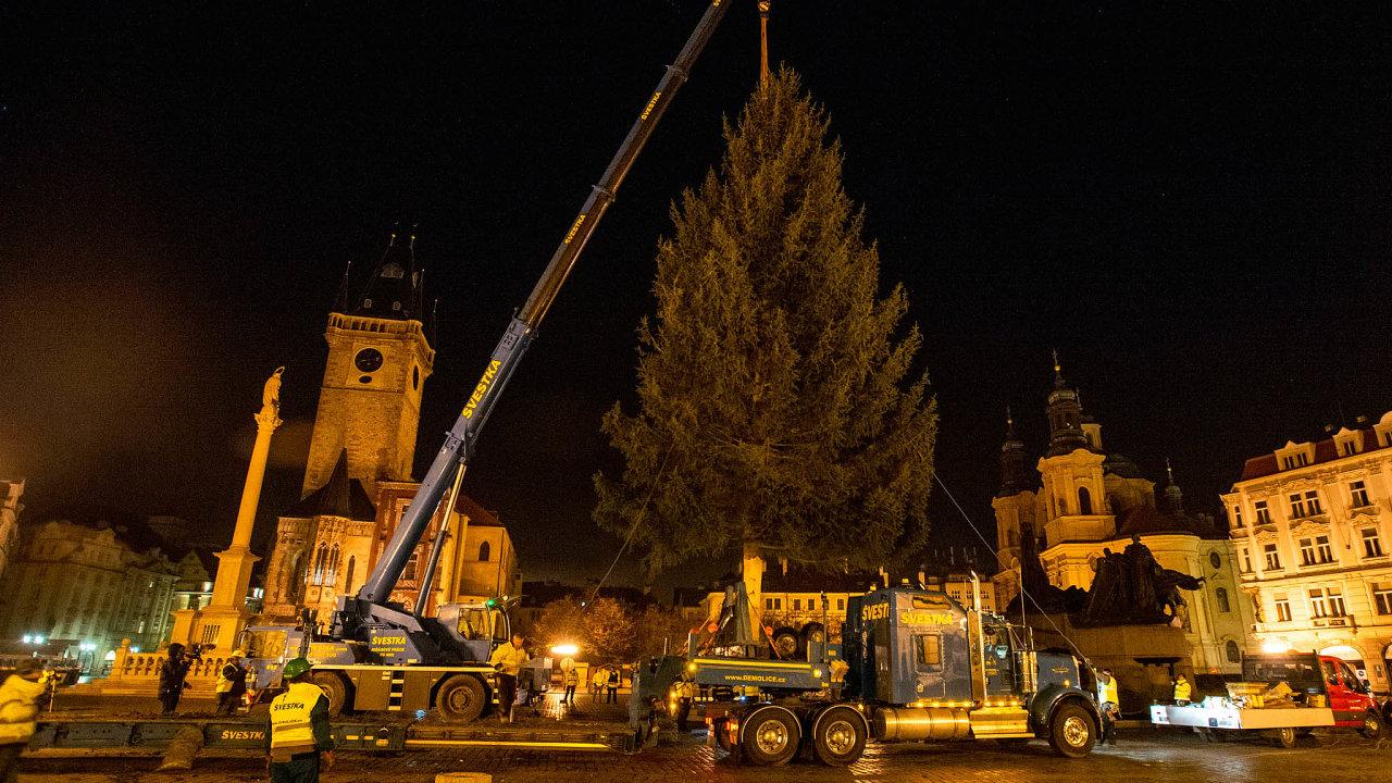 Odnoci na včerejšek má Praha svůj letošní vánoční strom. Kolem půl třetí ráno byl postaven naStaroměstském náměstí. Pochází zKamenného Přívozu.