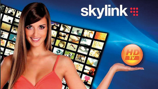 Skylink (ilustrační snímek)