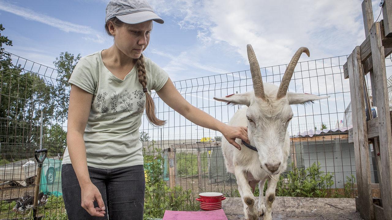 Tereza Janovská se kpražskému spolku MetroFarm připojila ise svým stádečkem koz.