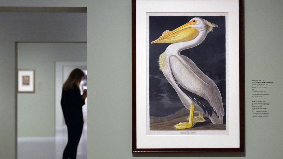 Snímek z výstavy ve Veletržním paláci
