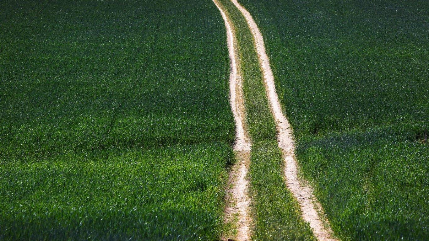 Vláda zrychlí výkup pozemků a zkrátí lhůty pro povolení strategických projektů