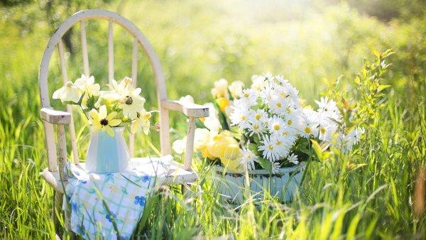 Letošní sezoně zahradního posezení vládne zelená a přírodní materiály - Ilustrační foto.
