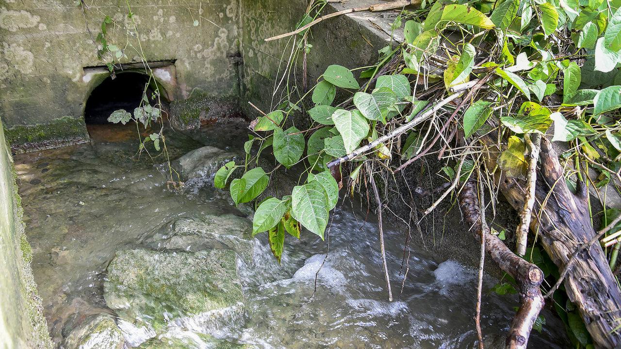 Ekologická katastrofa: 20. září kyanid nařece Bečvě otrávil desítky tun ryb. Rybář Vladimír Foltýn pod výpustí vdobě otravy pozoroval achytal zdravé ryby.
