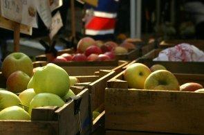Ze z�honku a� ke dve��m: Bed�nky s ovocem a zeleninou putuj� do dom�cnost� p��mo od zem�d�lc�