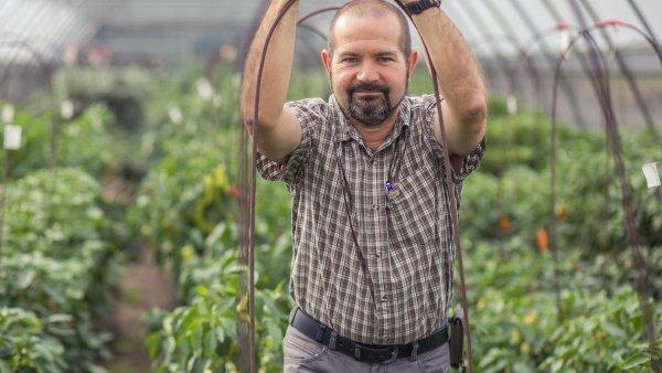 """""""Je mi jasné, že uvedení některých odrůd, které dnes začínáme šlechtit, na trh se už nedožiju. Trvá to ipatnáct let, než se odrůda vyšlechtí. Jsem stím smířený,"""" říká Jan Prášil."""