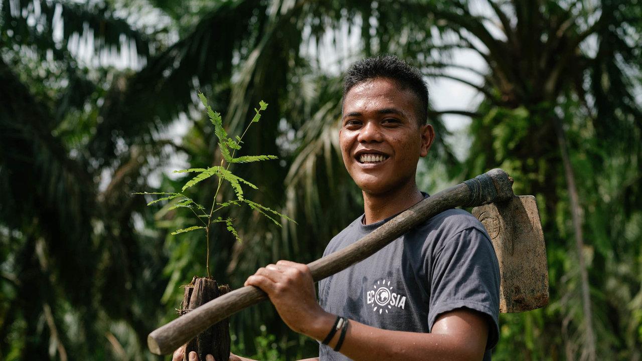 Obnova lesů na Sumatře. Masivní kácení indonéských deštných pralesů pro vyšší produkci palmového oleje kompenzuje Ecosia výsadbou stromů na ostrově Sumatra.