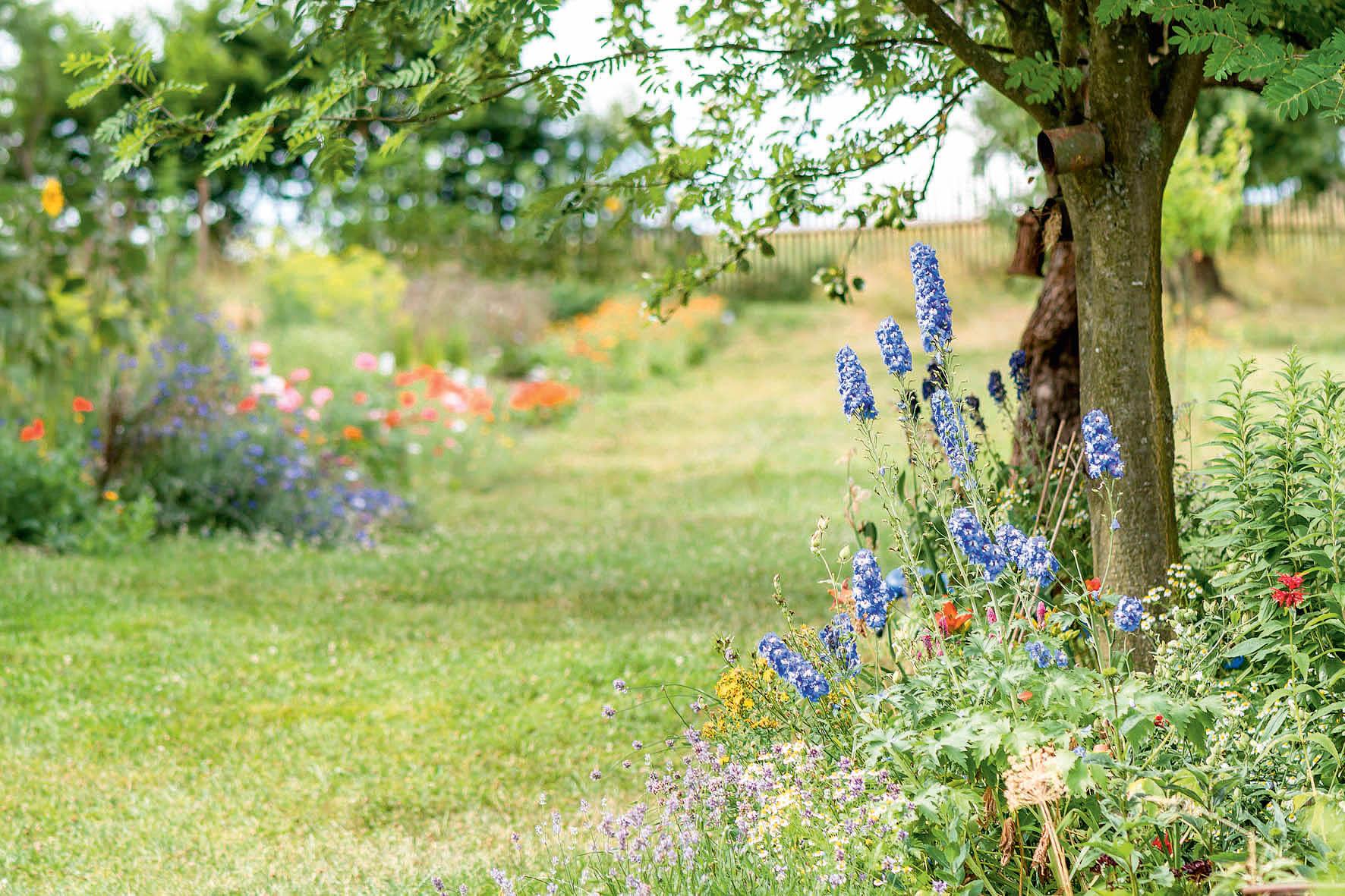Přírodní zahrady musí mít styl amusí vnich být poznat záměr aaktivita zahradníka. Nejde ovolně ponechané rostliny, které si mohou růst, jak chtějí.