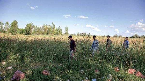 Video: Jeden den v t�bo�e s afgh�nsk�mi b�enci