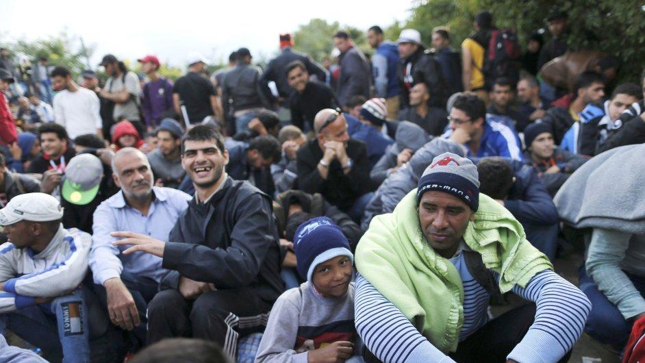 Uprchlíci čekající na možnost přejít hranice ze Srbska do Chorvatka v blízkosti vesnice Babska.