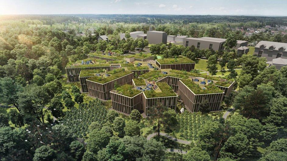 Jeden velký strom by mělo při pohledu shora připomínat nové ředitelství Lesů ČR.
