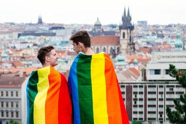 Manželství homosexuálů štěpí strany a stále čeká na projednání.