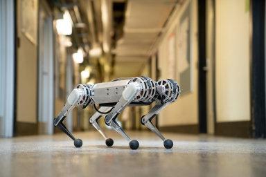 """Nového robota nazývají v MIT pro jeho hbitost a obratnost """"minigepardem""""."""