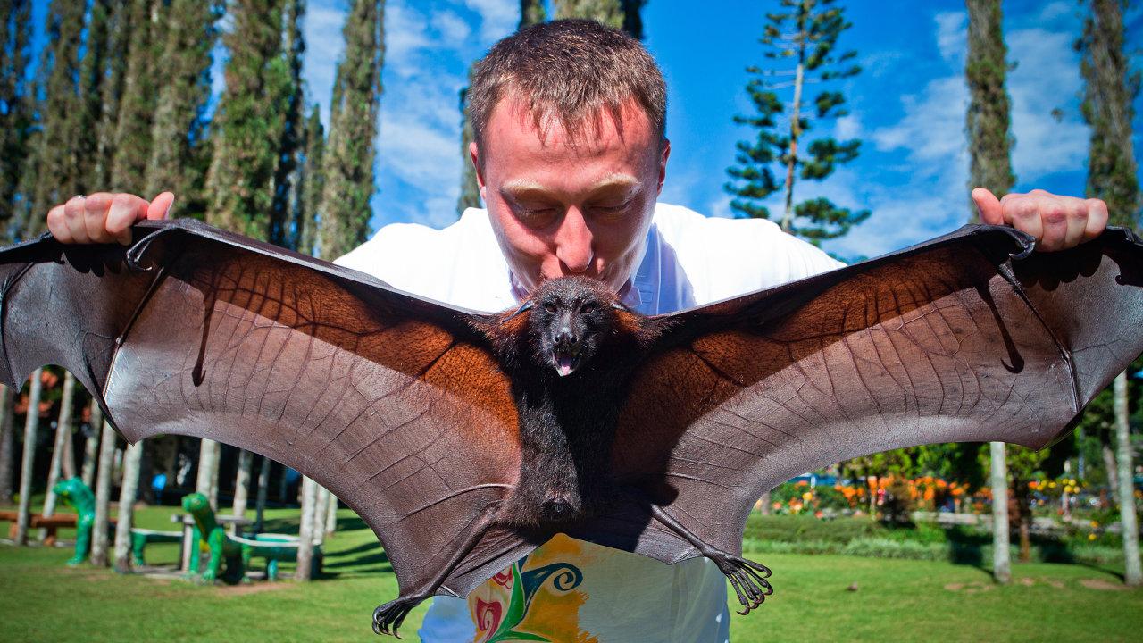 Echolokací, schopností orientovat se vprostoru pomocí zvuku, nejsou vybaveni jen netopýři. Aktivovat vmozku zrakové centrum, které zvukové signály při místní orientaci zpracovává, dokáže ičlověk.