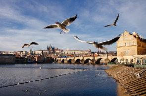 Němci cestují do Prahy rádi. Levnější jsou pro ně už jen balkánské metropole