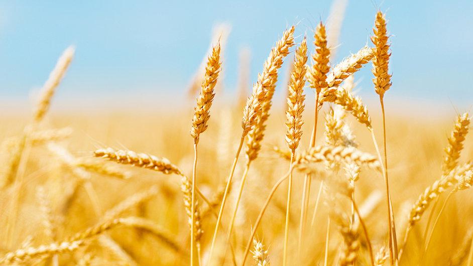 Do průzkumu potravinové bezpečnosti bylo zařazeno 107 zemí. Česko skončilo na 23. místě.