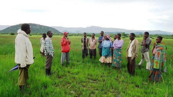 Nezisková organizace Maendeleo pomáhá farmářům v Tanzanii pomocí mikropůjček a vzdělávání.