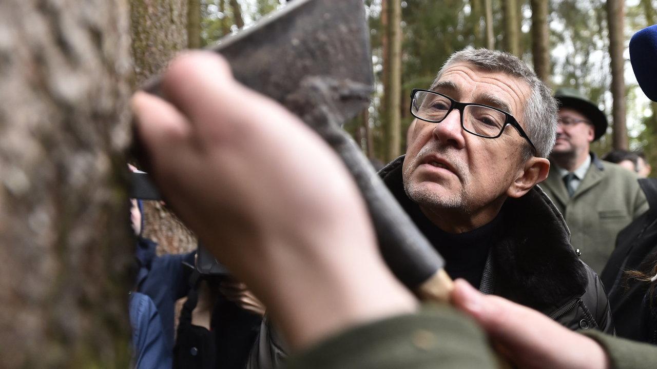 Problém kůrovec. Do zasažených lesů na Vysočině před dvěma lety v jednu chvíli dorazila na obhlídku hned polovina členů vlády Andreje Babiše. I teď před volbami v kraji půjde o jedno z hlavních témat.