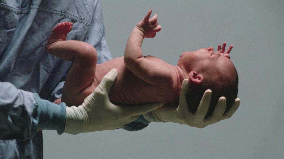 Případ podle lékařů potvrzuje obrovskou sílu počínajícího lidského života i sílu těla matky, které darovalo dítěti život navzdory mozkové smrti - Ilustrační foto.