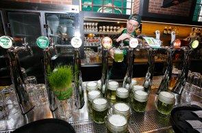 Zelený čtvrtek v pivovaru: Brněnské Zelené pivo zbarví bylinky i likér