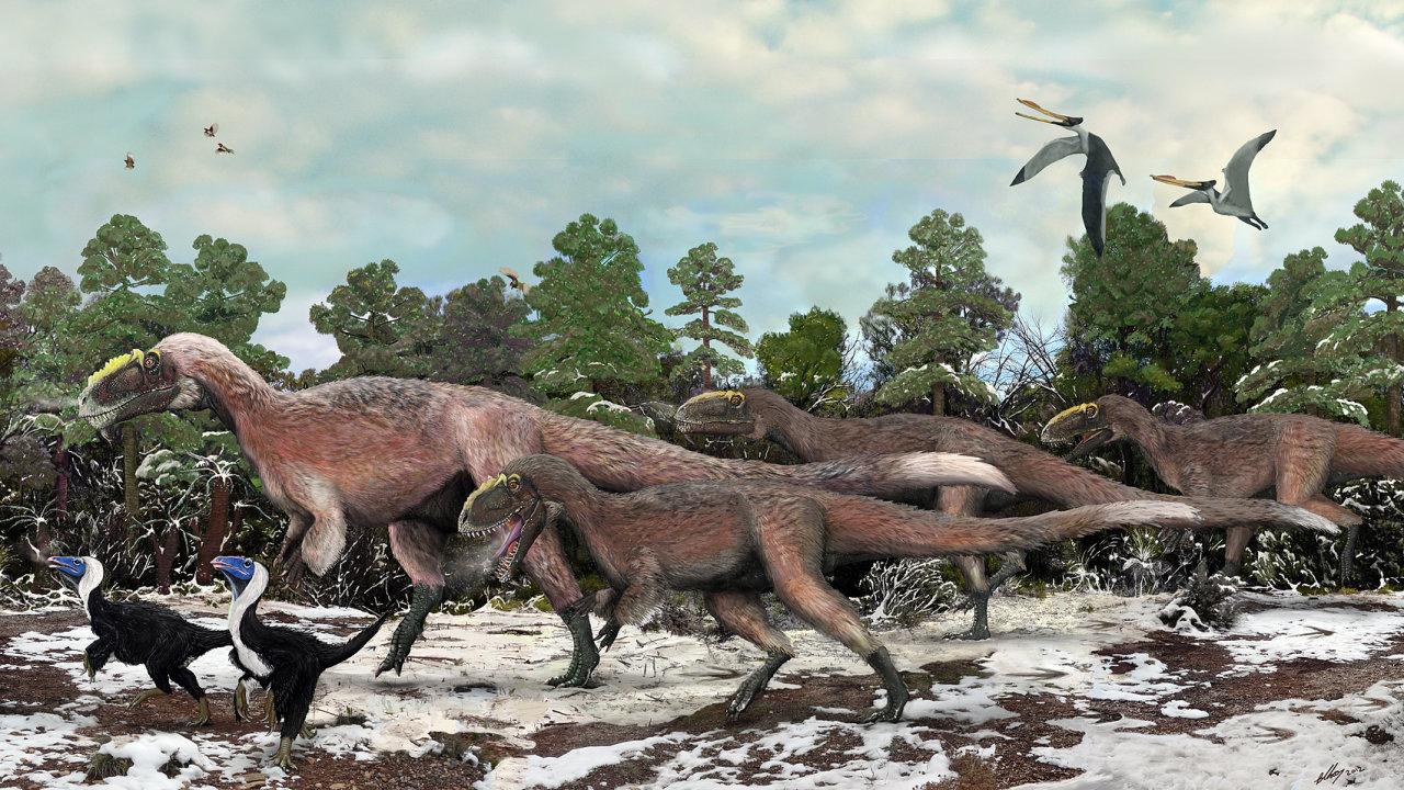 Obrazová rekonstrukce podoby opeřeného příbuzného tyranosaura rexe