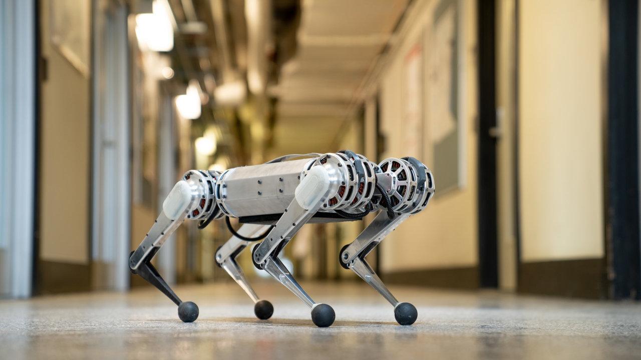 Nového robota nazývají v MIT pro jeho hbitost a obratnost