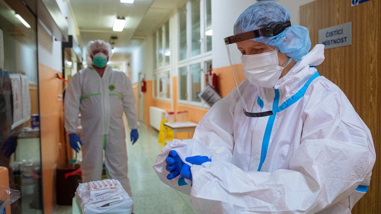 Způjčky od Rozvojové banky Rady Evropy zaplatí vláda nákup testů napřítomnost koronaviru či přestavbu nemocnic, aby mohly lépe čelit pandemii. Použije ji i nanákup respirátorů či roušek.