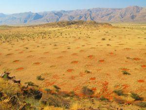 Výsledek obrázku pro Vílí kruhy poušť