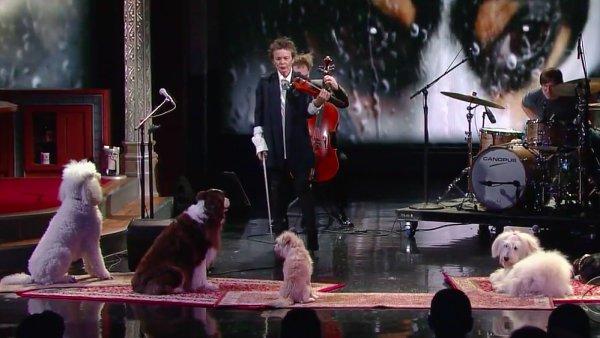 Laurie Andersonov� koncertovala pro ps� publikum.