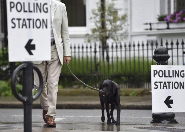O brexitu hlasují s páníčky i psi.
