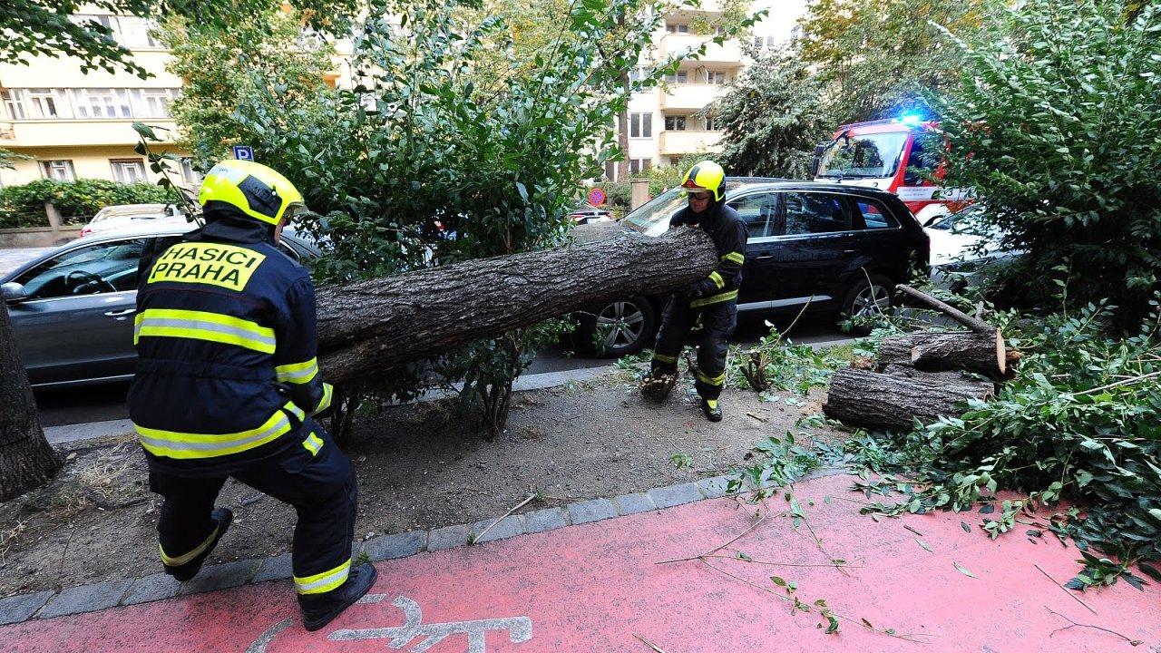Hasiči odklízejí strom v pražské Ovenecké ulici.