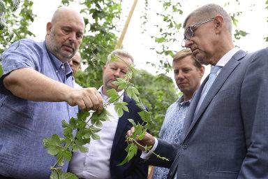 Ministr zemědělství Miroslav Toman (vlevo) a premiér Andrej Babiš (vpravo).