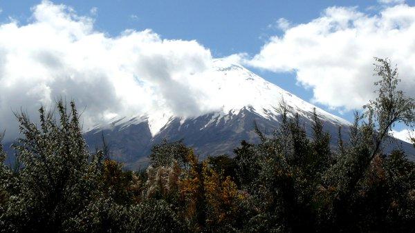Vulk�n Osorno je jednou z dominant Chile.