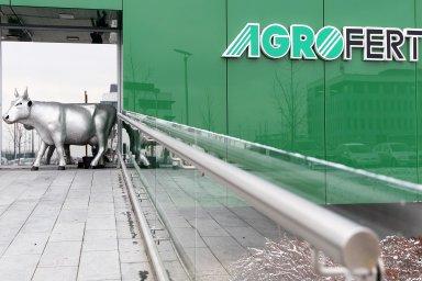 Skupina Agrofert je největší v českém zemědělství a potravinářství, dvojkou v chemickém průmyslu a významným subjektem i v lesnictví a médiích.