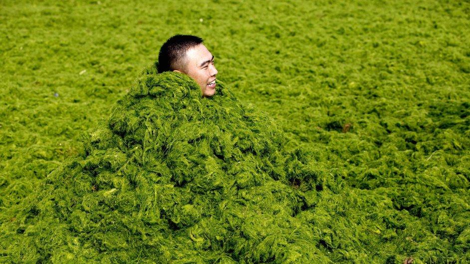 Číňan se do nánosů zelených řas celý zabalil