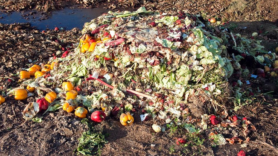 Nespotřebovaná končí podle OSN třetina světové produkce potravin (Ilustrační foto)