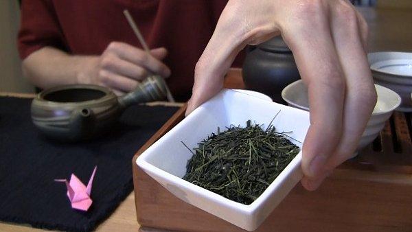 příprava čaje sencha
