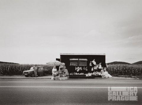 Torzo, Leica Galler Prague, do 3. listopadu