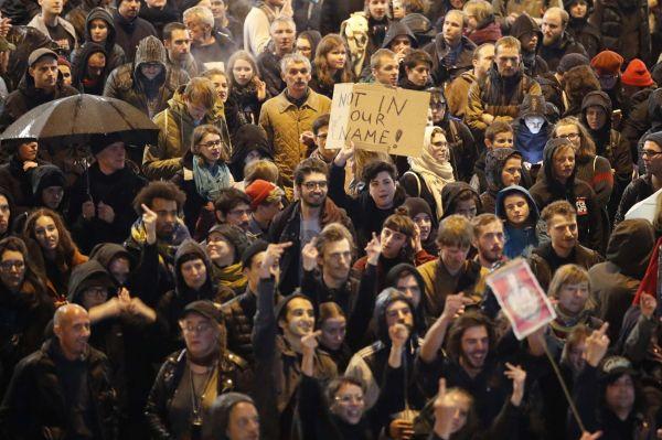 demonstrace, německo, afd