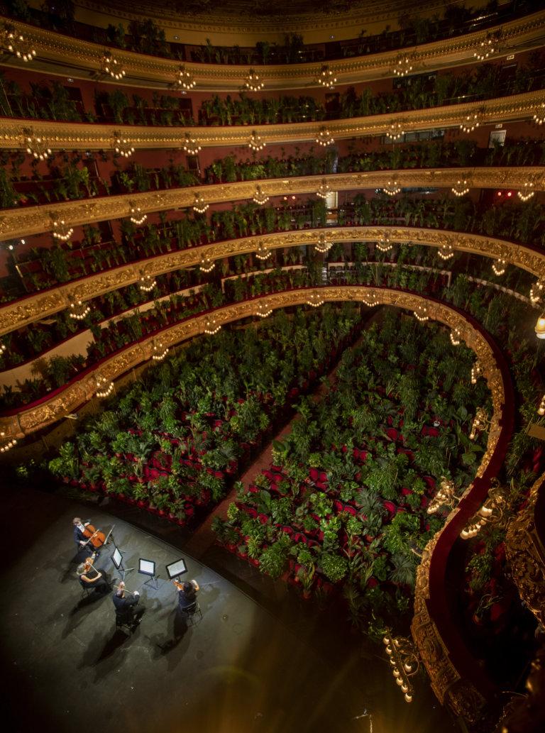 Barcelonská opera Liceu dnes poprvé po více než třech měsících nucené přestávky kvůli epidemii covidu-19 otevřela své dveře - první koncert však odehrála tichému publiku složeného z bezmála 2300 pokoj