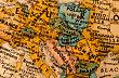 Ilustrační foto - Politická mapa Evropy