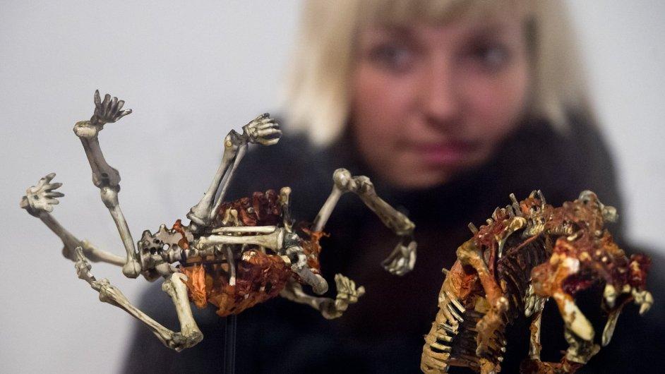 Snímek z výstavy Davida Cronenberga