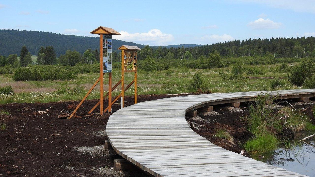 Přes obnovené rašeliniště u Perninku vede dřevěný chodník