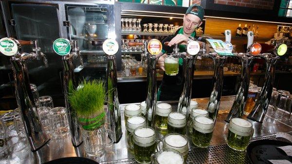Zelené pivo bude ve čtvrtek vařit pivovar Starobrno.